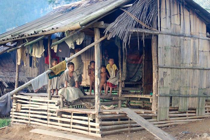 landbewohner-philippinen-xxl