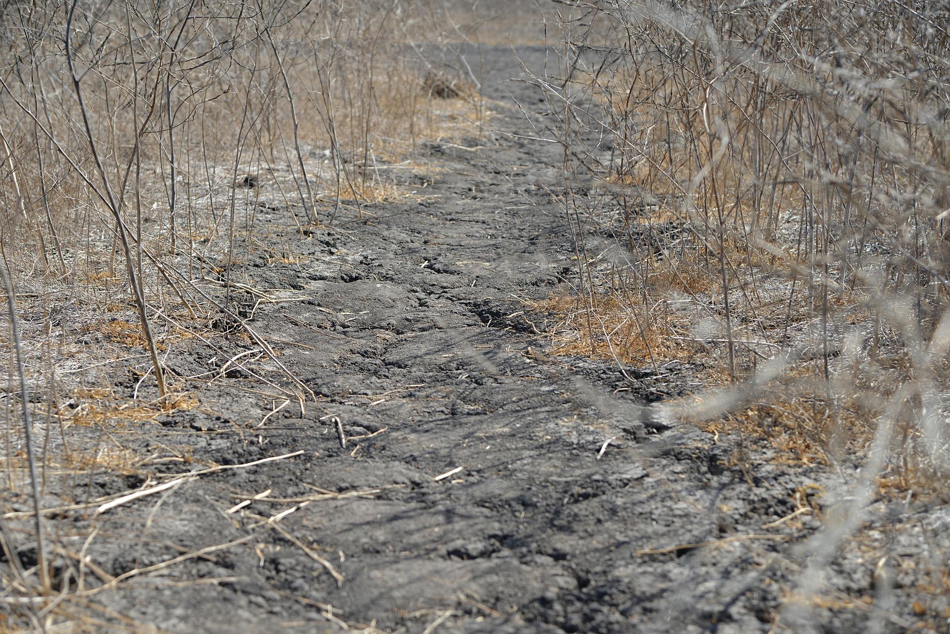 Wo alle Wasservorräte in die Landwirtschaft fließen, werden Dürren zu Katastrophen.