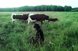 Julia Bar-Tal spricht über Landwirtschaft und Corona
